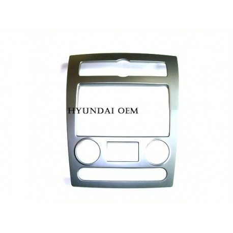 Center Fascia with LCD Display