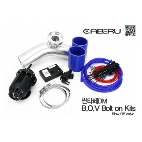 GTG BOV with Module Control