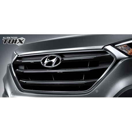 Tuix Front Grill