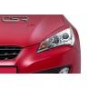CSR Automotive Eyelids