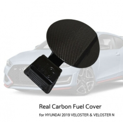 Carbon Fiber N Fuel Door