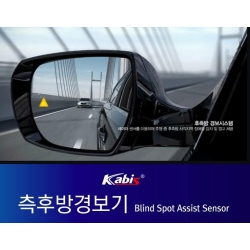 Blind Spot Assist System