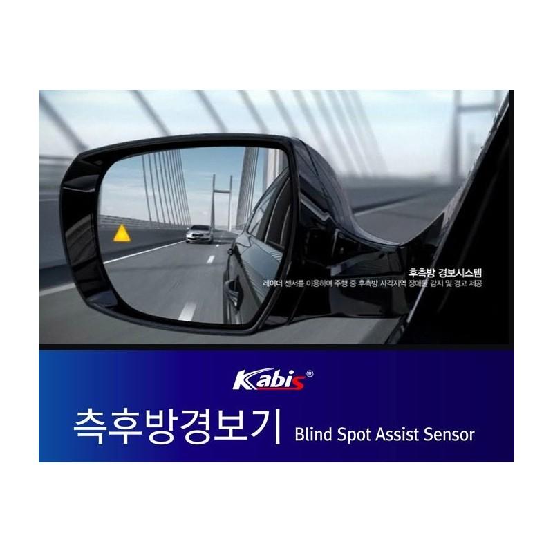 Blind Spot Assist System